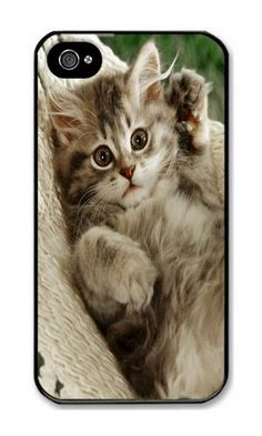 iPhone 4/4S Case DAYIMM An Cat Black PC Hard Case for Apple iPhone 4/4S DAYIMM? http://www.amazon.com/dp/B012IN7UGI/ref=cm_sw_r_pi_dp_o4cmwb0X00R2T