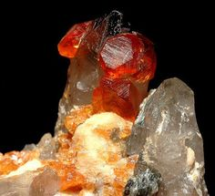 Sample from China of garnet crystals with quartz.