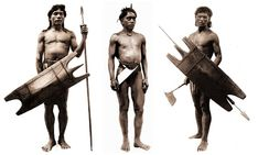 Bontoc Igorots with headhunting axe, spears and shields