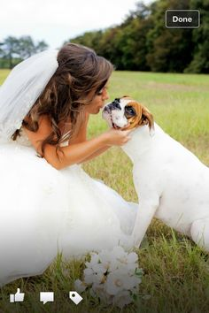 Bridal portrait with dog. DEFINITELY doing this with Pearl so start rolling eyes now~! lol