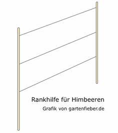 Himbeerenrankhilfe Outdoor, Furniture, Home Decor, Gardening, Terrace, Farmhouse Garden, Houseplants, Fruit, Round Round