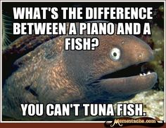 what's the difference between a piano and a fish?