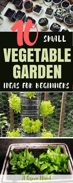 10 Small Vegetable Garden Ideas For Beginners. There are certainly many ways to maximize your space for growing vegetables. Whether you utilize windowsill gardening or vertical gardening, we hope that this inspired you to start your own vegetable garden. #vegetablegarden #gardenideas #gardening #agreenhand