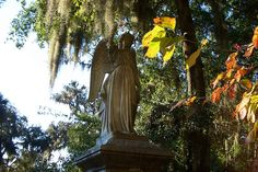 Bonaventure Cemetery is beautiful any time of the year, but is especially gorgeous in the Fall!