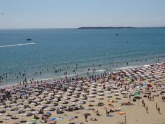 Beach Video, Seaside Resort, Sunny Beach, Travel News, Bulgarian, Old Town, Night Life, Dolores Park, Freedom