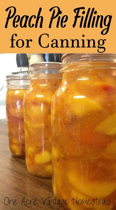 Peach Pie Filling For Canning ⋆ One Acre Vintage & Pumpkin Patch Mtn. Make and water bath can your own peach pie filling to make summertime pies anytime of the year. This is a water bath canning preservation recipe. Home Canning Recipes, Jam Recipes, Cooking Recipes, Canning Tips, Canning Peach Recipes, Peach Pie Recipes, Peach Jelly Recipe Canning, Water Pie Recipe, Canning Peach Salsa
