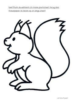 een pluimstaart voor de eekhoorn