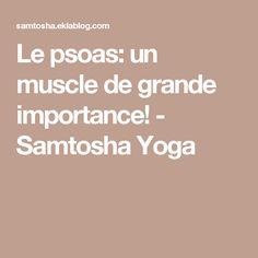 Le psoas: un muscle de grande importance! - Samtosha Yoga