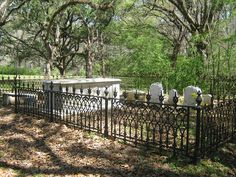 Natchez Trace Cemetery...love the iron fences...
