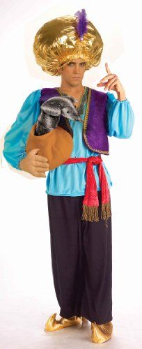 Forum Novelties Snake Charmer Costume, Blue/Purple, One Size Forum Novelties http://www.amazon.com/dp/B000WPYYC8/ref=cm_sw_r_pi_dp_ah-Kub0AZW1KG