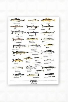Fish Tea Towel - Urban Outfitters