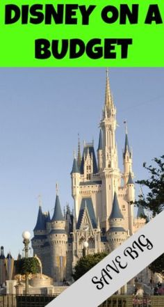 I have outlined some Disney World Secrets and Tips that we used to have a wonderful vacation on a budget!