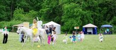 Visit Sweetie, our Unicorn-In-Residence, at the Maryland Faerie Festival