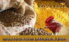 Makanan Ayam Bangkok Aduan Crochet Hats, Knitting Hats