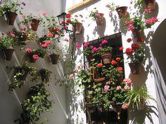 Córdoba,Spain