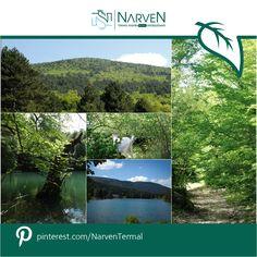 #Bolu'nun doğal güzelliklerini yeniden keşfetmek ve yeşilin kalbindeki Narven Termal Kasaba ile tanışmak için, sizi tanıtım turumuza davet ediyoruz. http://narven.com.tr/turform.php  #NarvenTermal #Termal #Bolu