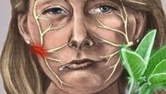Tienes un milagro frente a tus ojos y no lo sabes: Esta hierba sana la parálisis y activa la circulación.