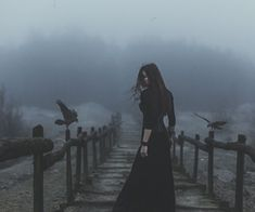 Immagine di dark, witch, and raven