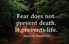 Fear does not prevent death. It prevents life