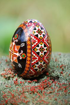 Goose Egg-Side Band  This pysanky by Maggie Tarris Bauer www.pysankybasics.com