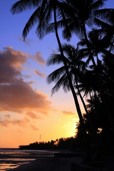 "vurtual: ""Fiji sunset (by "" Fiji Islands, Hawaii, Sunrise, Places To Visit, Nature, Travel, Outdoor, Inspiration, Outdoors"