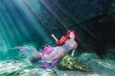 Meet Real Mermaid Haley- A Professional Mermaid Model - The little thins - Event planning, Personal celebration, Hosting occasions Mermaid Pose, Mermaid Cosplay, Mermaid Man, Mermaid Pictures, Mermaid Barbie, Mermaid Images, Tattoo Mermaid, Fantasy Mermaids, Real Mermaids