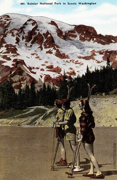 Mount Rainier National Park, Washington -- vintage postcard, summer skiing.