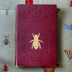 Quand on chine on trouve. ABC de l'Apiculture par E. R. Root, première édition, 1905 et en français ! Très rare ! When you go out antiquing you never know what you'll find: Super rare 1905's first edition in french of ABC of Bee Culture: a Cyclopaedia Honey Bees A.I. Root & E.R. Root. #books #abc #livre #rare #vintage #oldschool #encyclopedie #roots #beekeeping #apiculture #1905 #premiereedition #firstedition #francais #manuel #collection #brocante #insectes #cyclopaedia