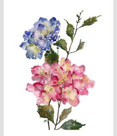 Beautiful watercolor hydrangeas