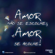 Há que procurar amar enquanto vivemos... pois não se encontra nada de melhor.!...