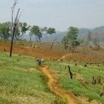 #Trekking #Pai #Thailand