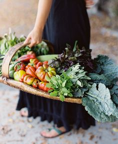 Beautiful Vegetable and Herb Filled Basket at the Santa Barbara Farmers' Market from @Karen Wise