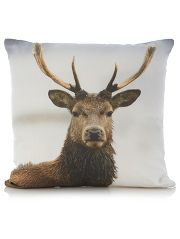 George Home Stag Cushion #woodland  #trends #animals #cute #winter #home #yourhomemagazine #decorating #fox #owl #squirrel