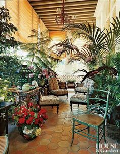 Patio with beautiful plants and trees