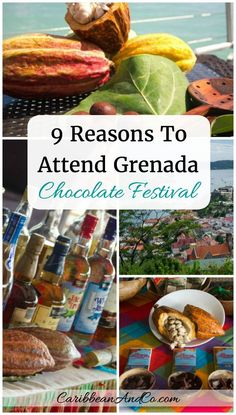 Chocolate lovers should consider travel to the True Bay Blue, a boutique resort located on the south coast of the Caribbean island of Grenada for the annual Grenada Chocolate Festival.