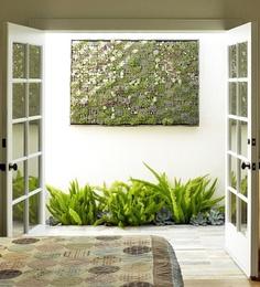 Stunning vertical garden of succulents by San Francisco's Flora Grubb Gardens.