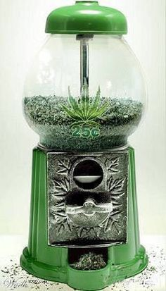 BEST. BUBBLE GUM MACHINE. EVER. 420 ✌