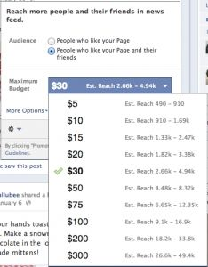 Facebook Pages Are a Bad Investment for Small Businesses