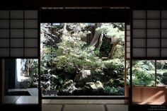Garden view {Kanazawa 2016}  view into the garden from the 'entertainment room' at the Nomura Samurai House.  Tomorrow I am heading over to Kyoto for a few days. Lots of shoots to get done then Osaka and then I have a something very cool lined up in the mountain in Gujo. So stay tuned for more shots!!  Follow me around the world!  6/30/16 10:47  Minato-ku Japan  http://ift.tt/291Au5W  274.888 km  Day 34  #kanazawa #xpro2 #金沢 #日本 #everydayasia #wearethestreet #ig_japan #tokyocameraclub #asia…
