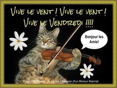 Vive le vent ! Vive le vent ! Vive le vendredi !!! Bonjour les amis!