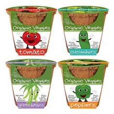 Organic vegetable planters for kids -- quick to sprout, easy to grow, will product their harvest early