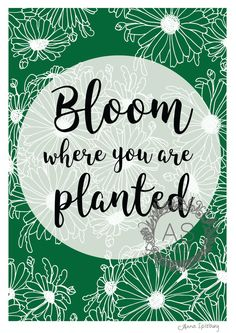 Bloom Where you are Planted, Green Full Page, PRINTABLE ART, Instant Download, Digital Art, Inspiration by AnnaSpilsburyDesign on Etsy https://www.etsy.com/au/listing/470892304/bloom-where-you-are-planted-green-full