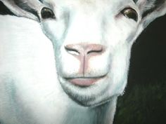 Goat Simone Manley @Simbotic Goats, Paintings, Fun, Animals, Animales, Paint, Animaux, Painting Art, Draw