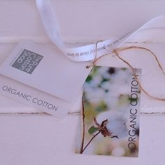 Organic Cotton - The Better Choice For You And The Environment