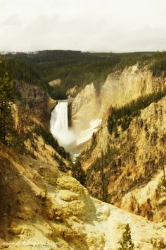 12 Things You Can't Miss On Your First Visit to Yellowstone! || Dirt In My Shoes