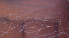 Sieć - globalne połączenie, usługi reklamy internetowej, jak pozyskać klientów w sieci internetowej, Andrychów, Wadowice, Kęty oraz Oświęcim...