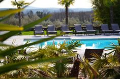 Un petit coin de #paradis au bord de la #piscine dans le #Gard pour l' #été ! #summer #swimming #pool #palmier
