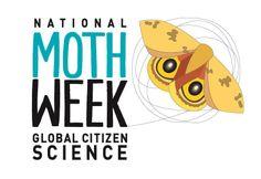 National Moth Week: July 18-26, 2015 (last full week of July, annually) nationalmothweek.org