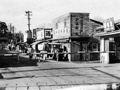 昭和30年代に国領駅の北側で鮮魚店を営業していたころの「さくらい」と国領駅(関連画像)