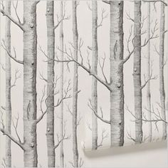 Nature-inspired home decor